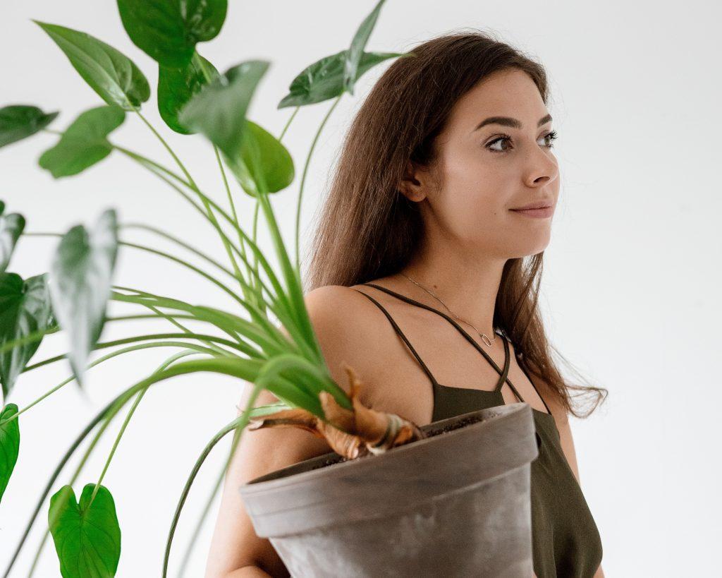 Pourquoi la génération Y mène la tendance des plantes d'intérieur